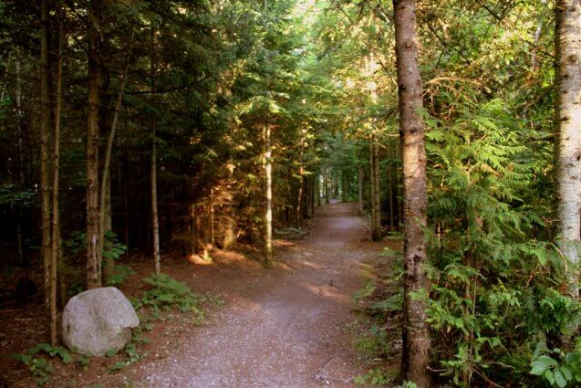 Photo of one of the many hiking trails at Mackinaw Mill Creek Camping in Mackinaw City, MI. © 2016 Frank Rogala.