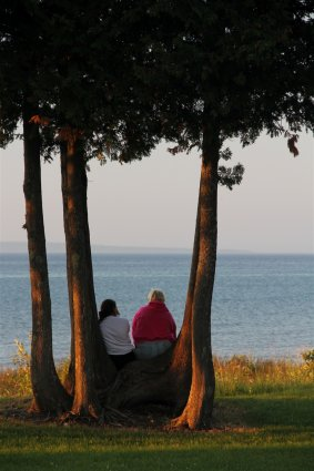 Photo of campers sitting on twisted Cedar trees along the shoreline at Mackinaw Mill Creek Camping in Mackinaw City, MI. © 2016 Frank Rogala.